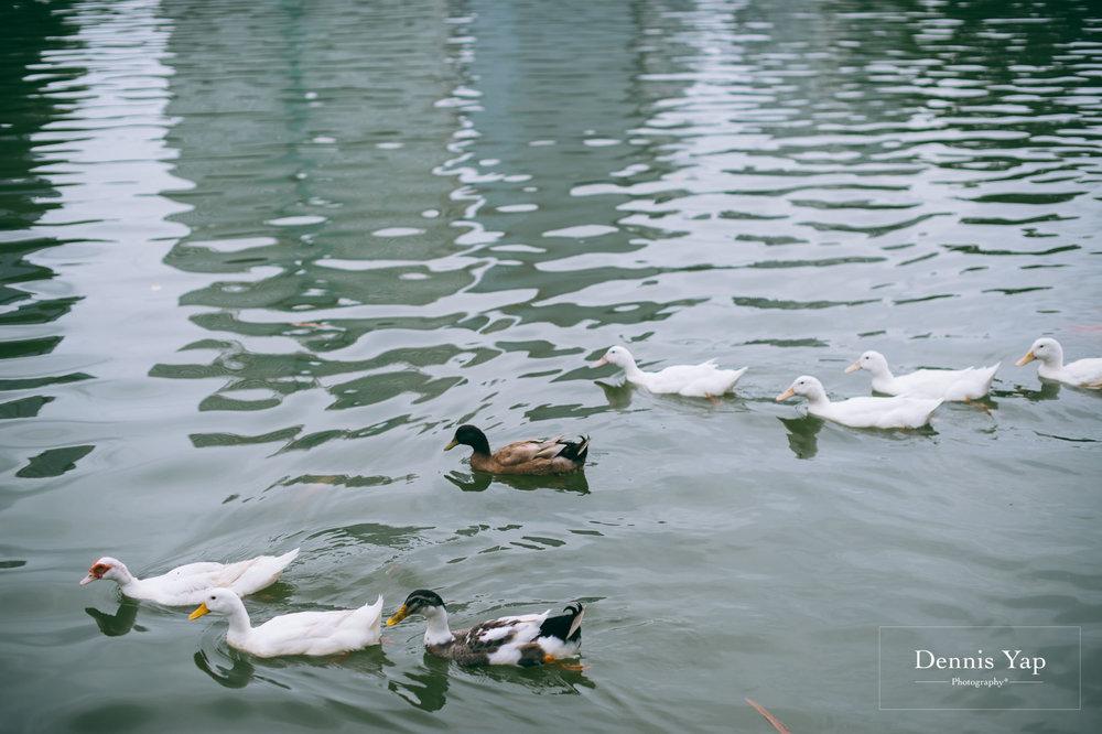 grace ang family portrait lake gardens dennis yap photography-30.jpg