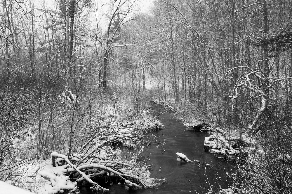 snowy_days_13.jpg