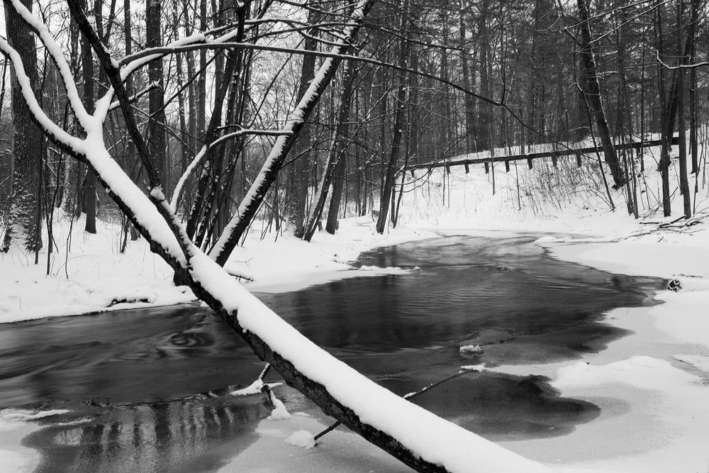snowy_days_8.jpg