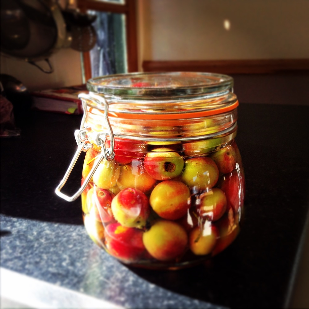 Pickled crab apples for Winter cheese boards