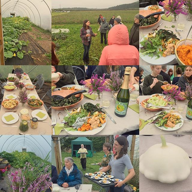 A snapshot from our exceptional summer evening #farmvisit to @falklandkitchenfarm on Saturday for #slowfood friends and supporters!  Our group enjoyed a tour of the small #organicfarm from Bryde & were later treated to an incredible #farmtotable dinner in the polytunnel with a plethora of #seasonal #vegetarian dishes made by Nat using produce from the fields surrounding us as we ate. We're hugely grateful of the couples hospitality and generosity throughout the visit!  #farmtofork #goodcleanfair #alfrescodining #youngfarmers #falkland #scottishfood #seasonal #summer #countryside #organic #salad #vegeterian #slowfoodyouthnetwork