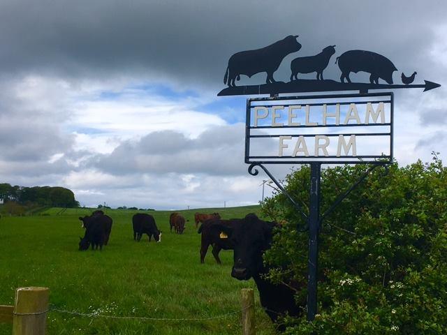 Peelham Farm.jpg