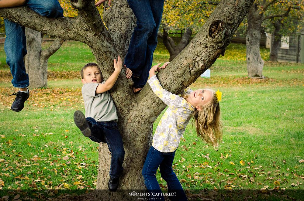 Tree Climbing Time