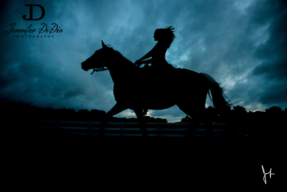 Jennifer.DiDio.Photography.Wimmer.horse.2013-168.jpg