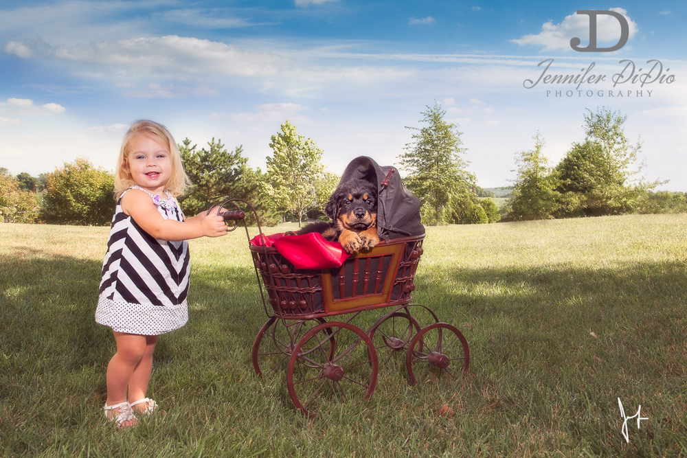 Jennifer.DiDio.Photography.puppy.Stone.Ruby.Madeline-103.jpg