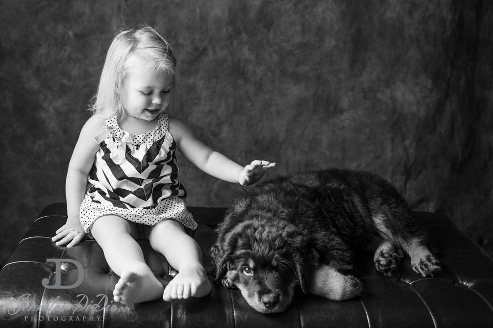 Jennifer.DiDio.Photography.puppy.Stone.Ruby.Madeline-121.jpg