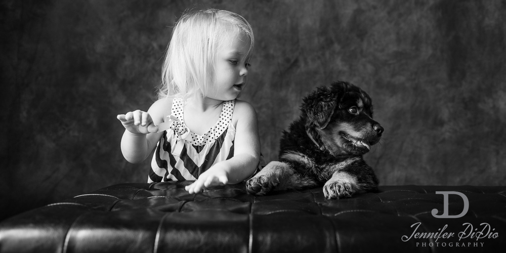 Jennifer.DiDio.Photography.puppy.Stone.Ruby.Madeline-133.jpg