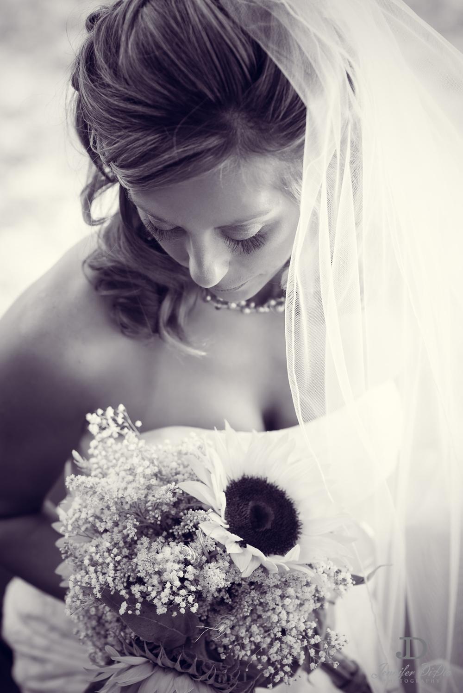 Jennifer.DiDio.Photography.Dell.Franklin.Wedding.2013-215.jpg