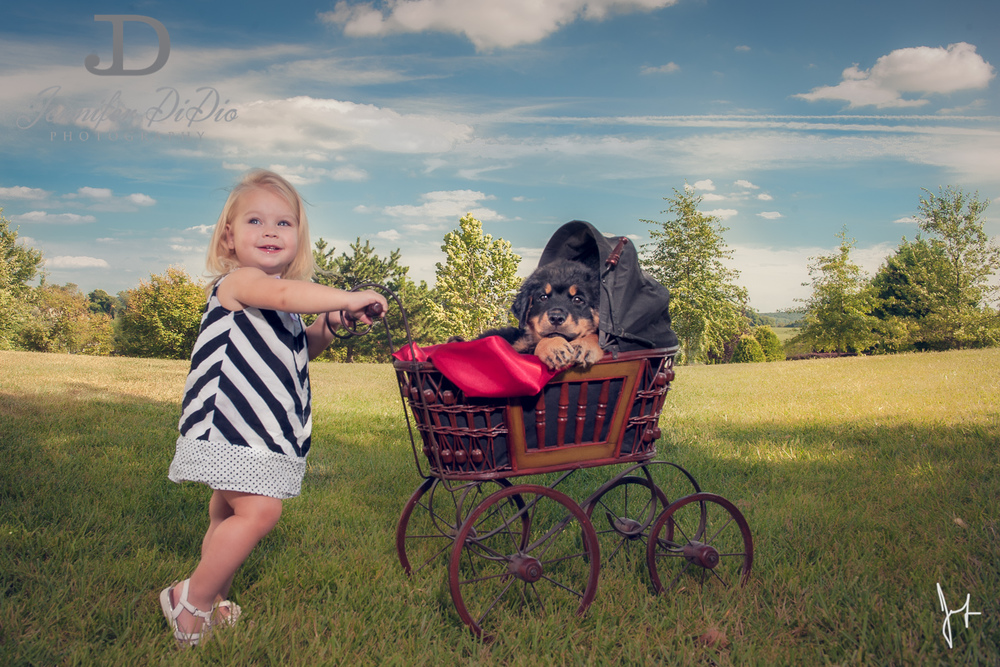 Jennifer.DiDio.Photography.puppy.Stone.Ruby.Madeline-105-2.jpg
