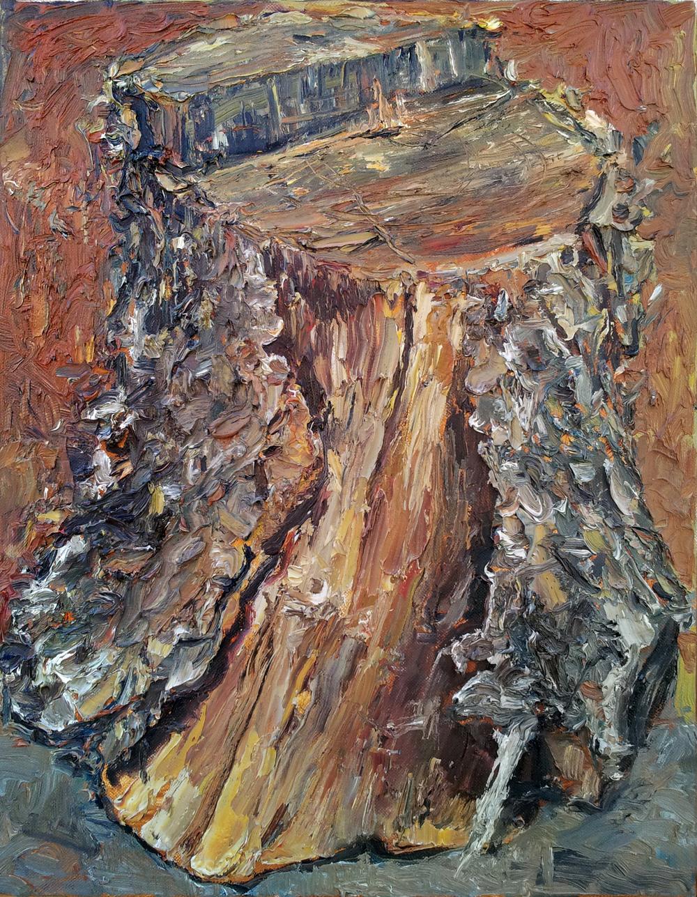 Bark Split Log