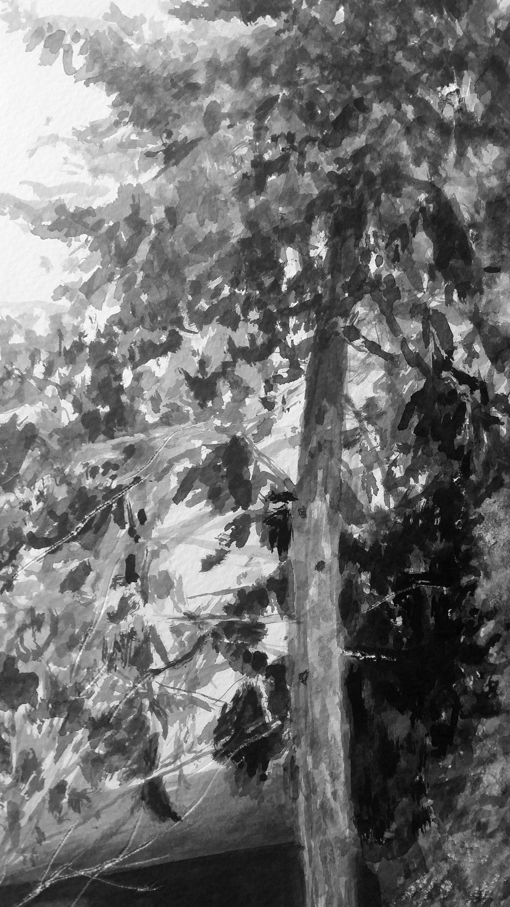 Fratney Street Pine detail