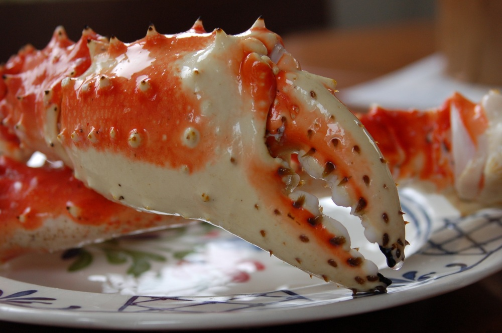 Alaska King Crab. Photo by Melissa A. Trainer