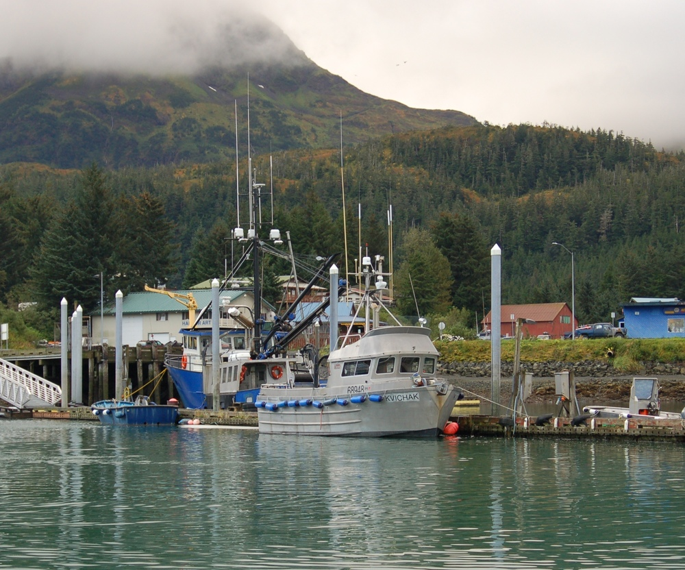 Cordova Harbor, 2011. Photo by Melissa A. Trainer