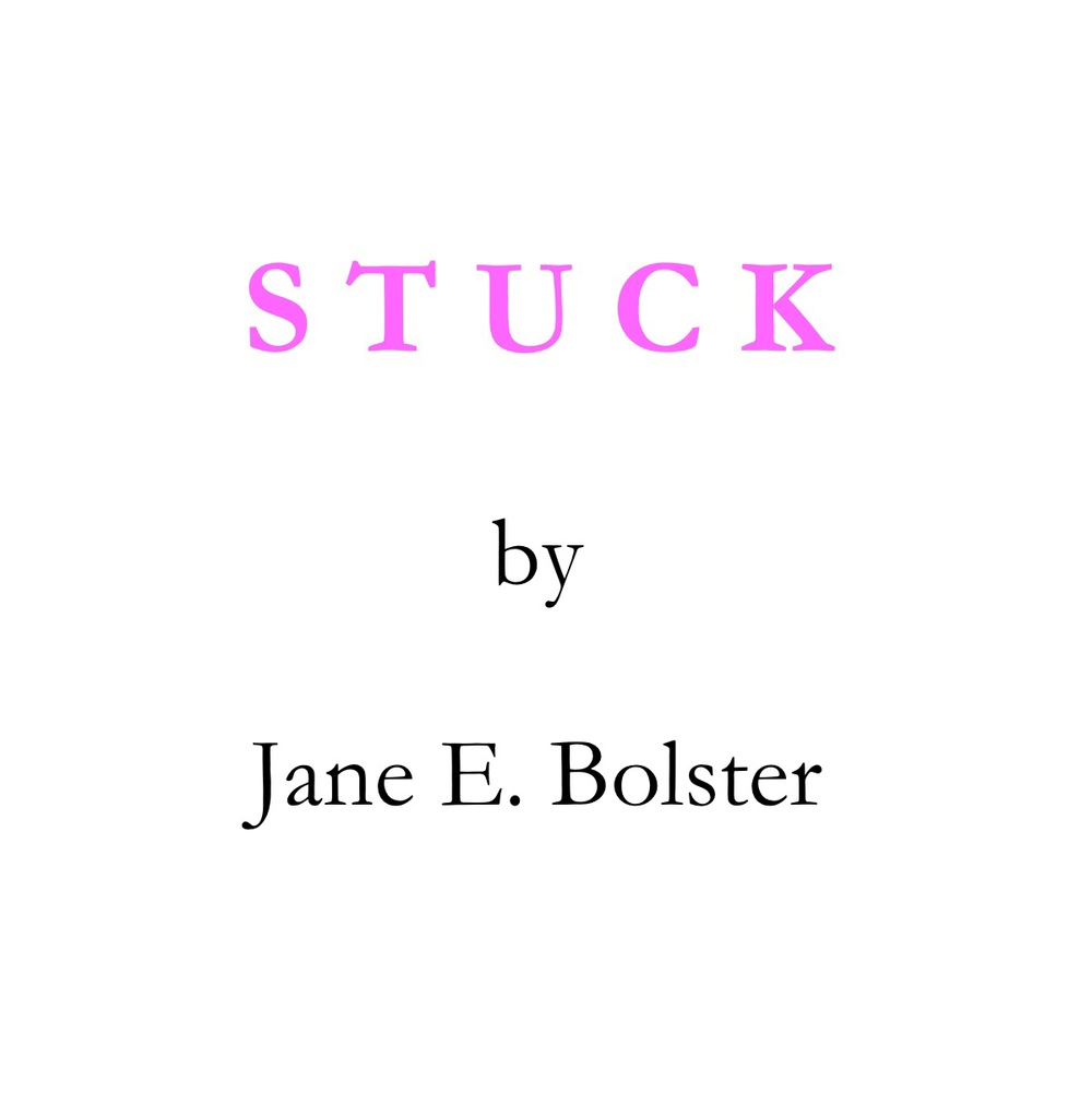 STUCK  by Jane E. Bolster            Stuck   tells the tale of young Will who's stuck and wants to stick it to his boss.