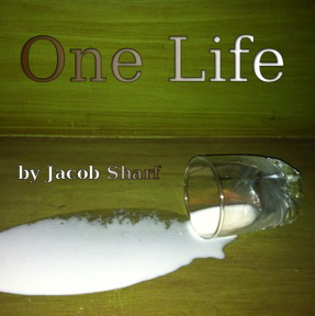 ONE LIFE  by Jacob Scarf           ONE LIFE...is about a cat: Samuel.   Wildly depressed by all his wasted lives, Samuel finds himself hopelessly bound at the end of an 80 proof rope. But when he meets an unexpected stranger, he is shown a new perspective that could alter his life forever.