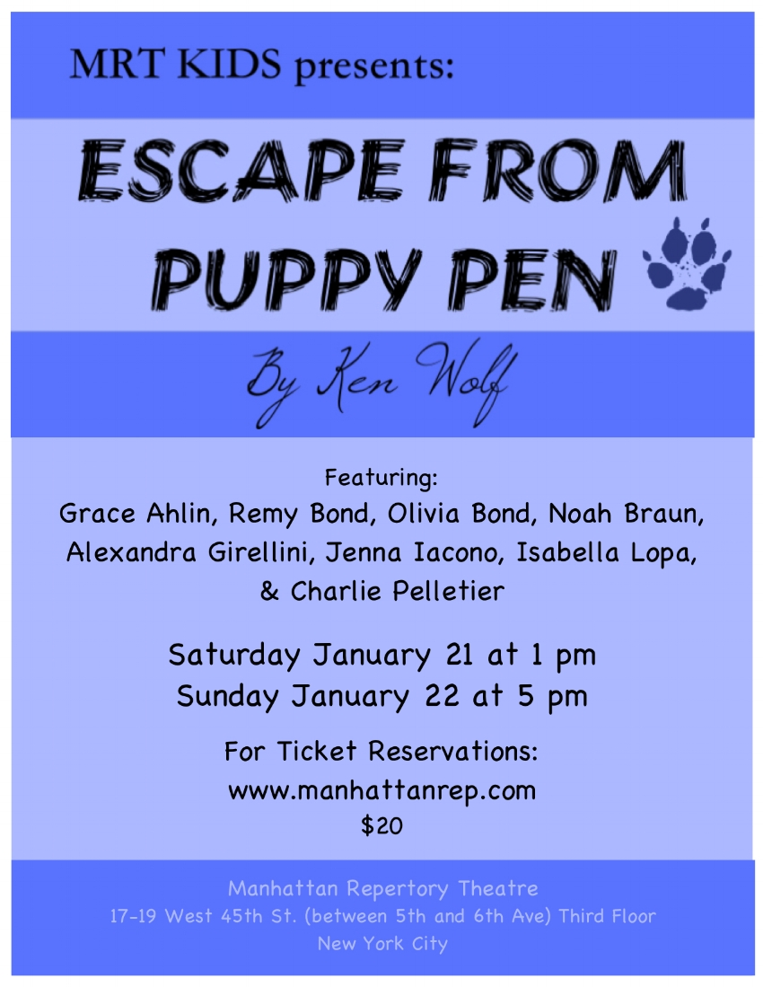 PUPPY PEN POSTER.jpeg