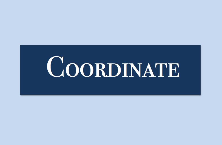 Coordinate Professional Organizing