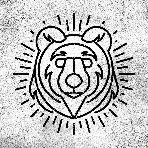 spirit bear BEAR.jpg