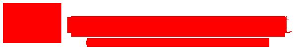 little-starship-net-logo