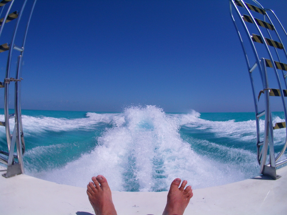 My Toes at Half Moon Caye.JPG