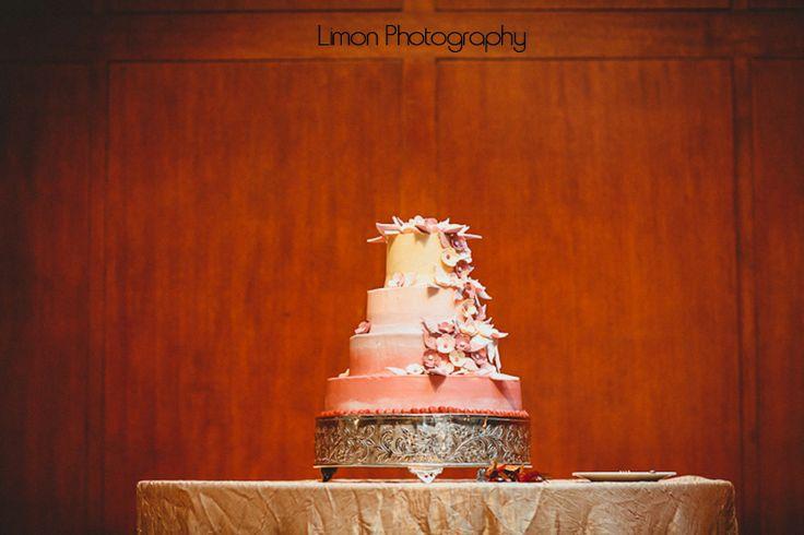 ombre-pink-wedding-cake-chapel-hill-wedding-modern-flowers-wedding-painter-wedding-artist-ben-keys