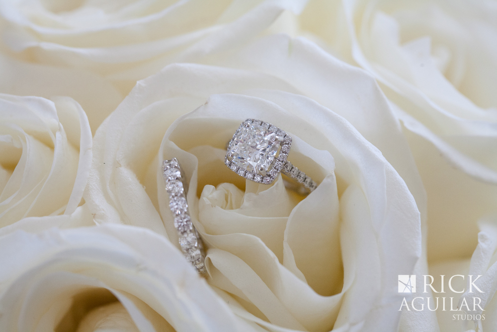 rings-in-roses-sofitel-chicago-ballroom-wedding-painter-wedding-artist-ben-keys