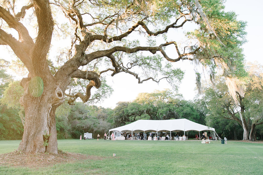 wingate-plantation-charleston-wedding