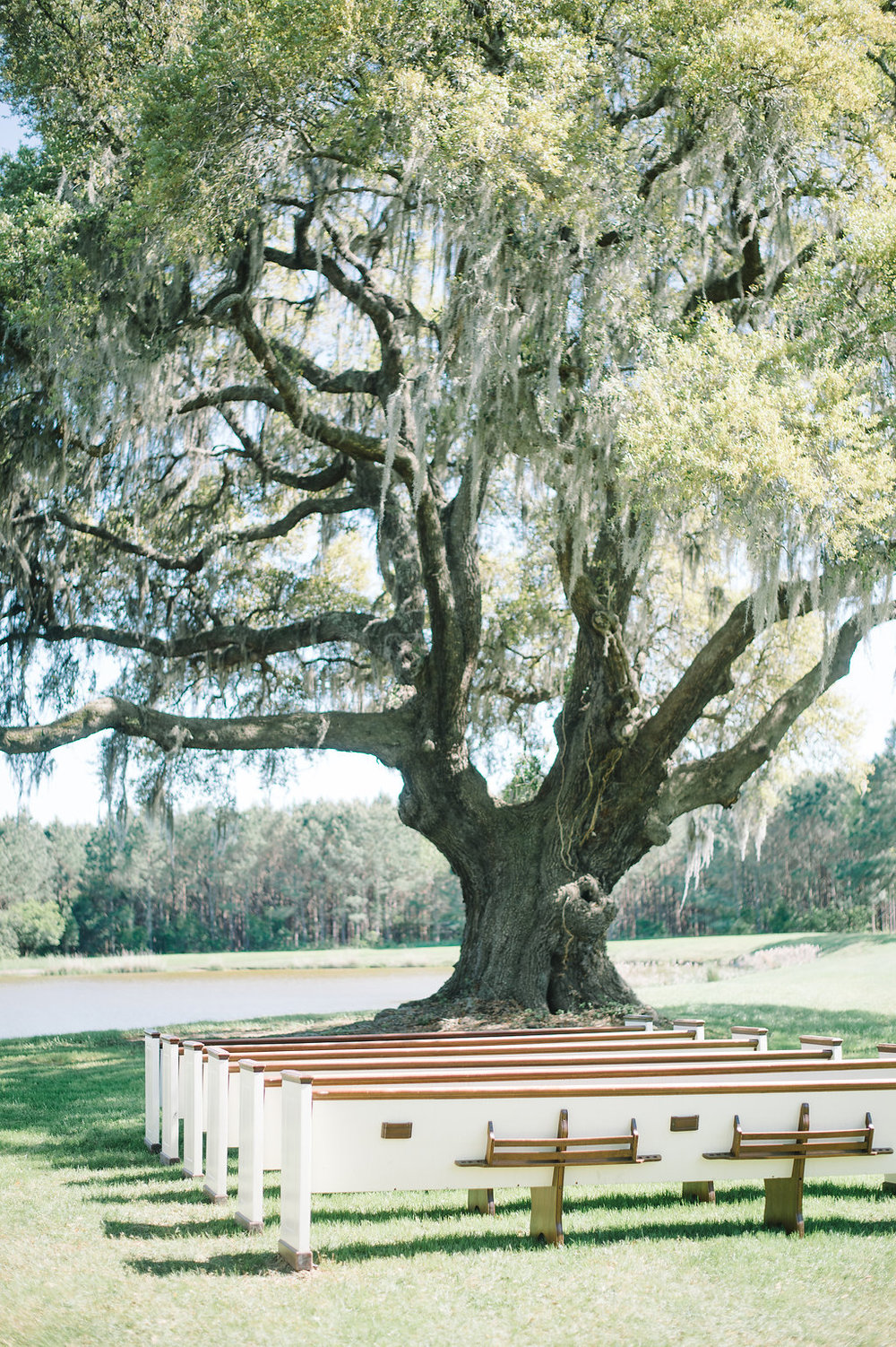 charleston-wedding-venue-wingate-plantation