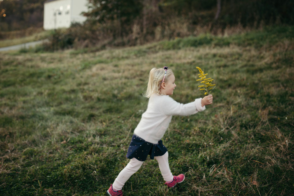 pittsburgh family photographer-16.jpg