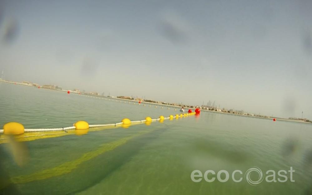 Jellyfish Net, Palm Jumeirah