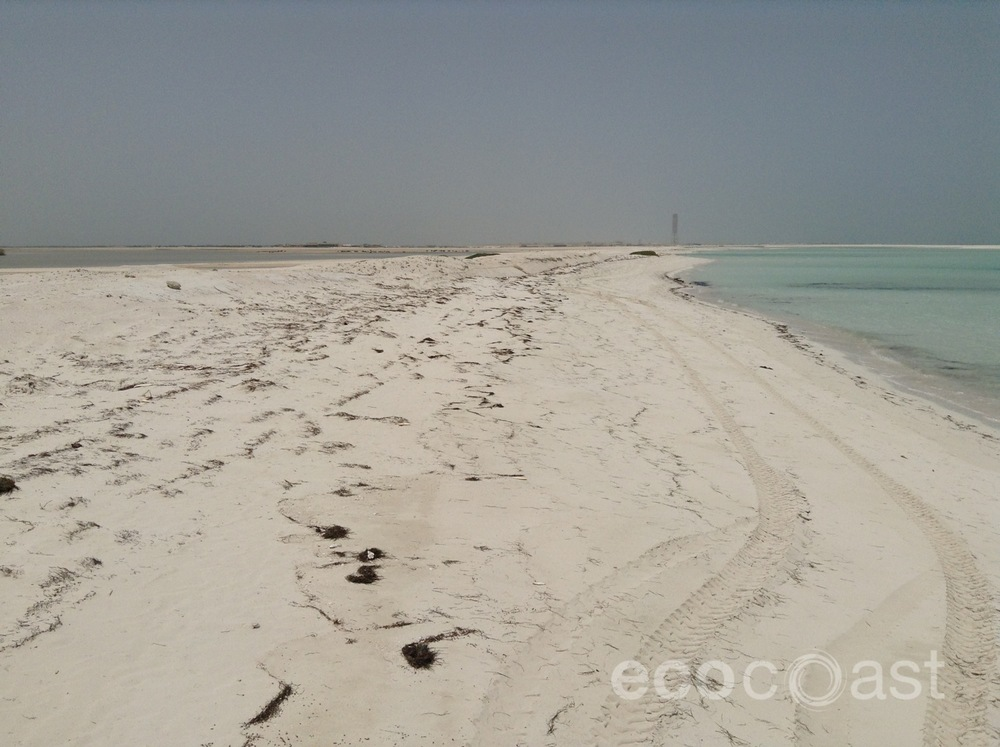 A wider, protected beach has formed since installation
