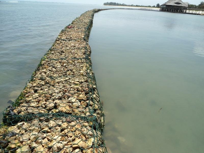 ecocoast_coastal_protection_0.JPG