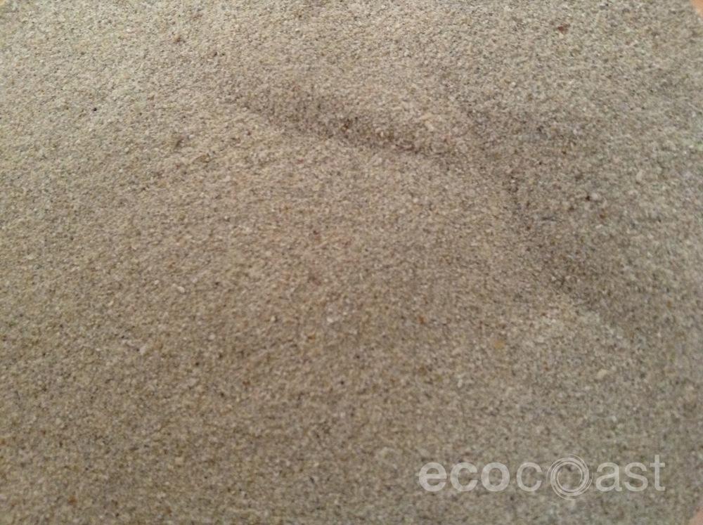ecocoast_beach_2.jpg