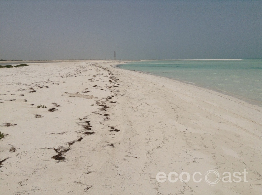 ecocoast_beach_construction_1.jpg