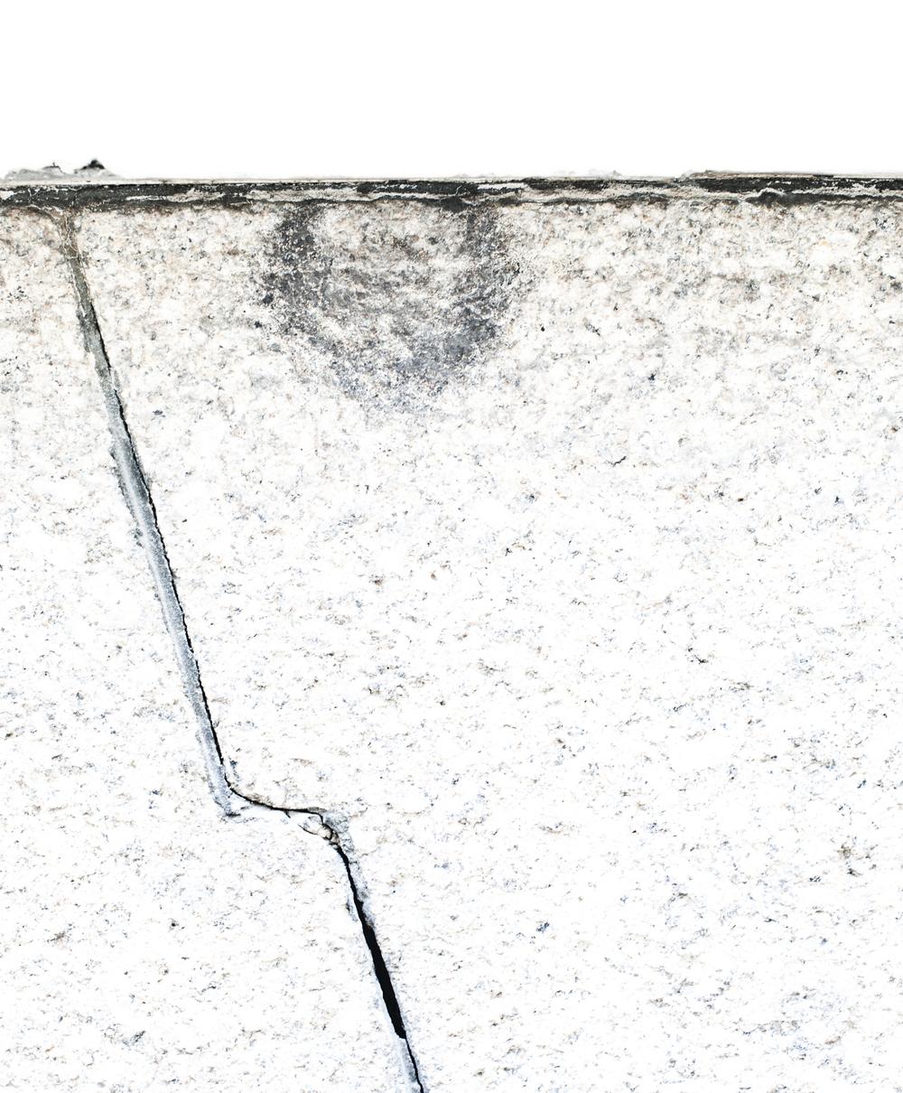 WHITE BANNER copy.jpg