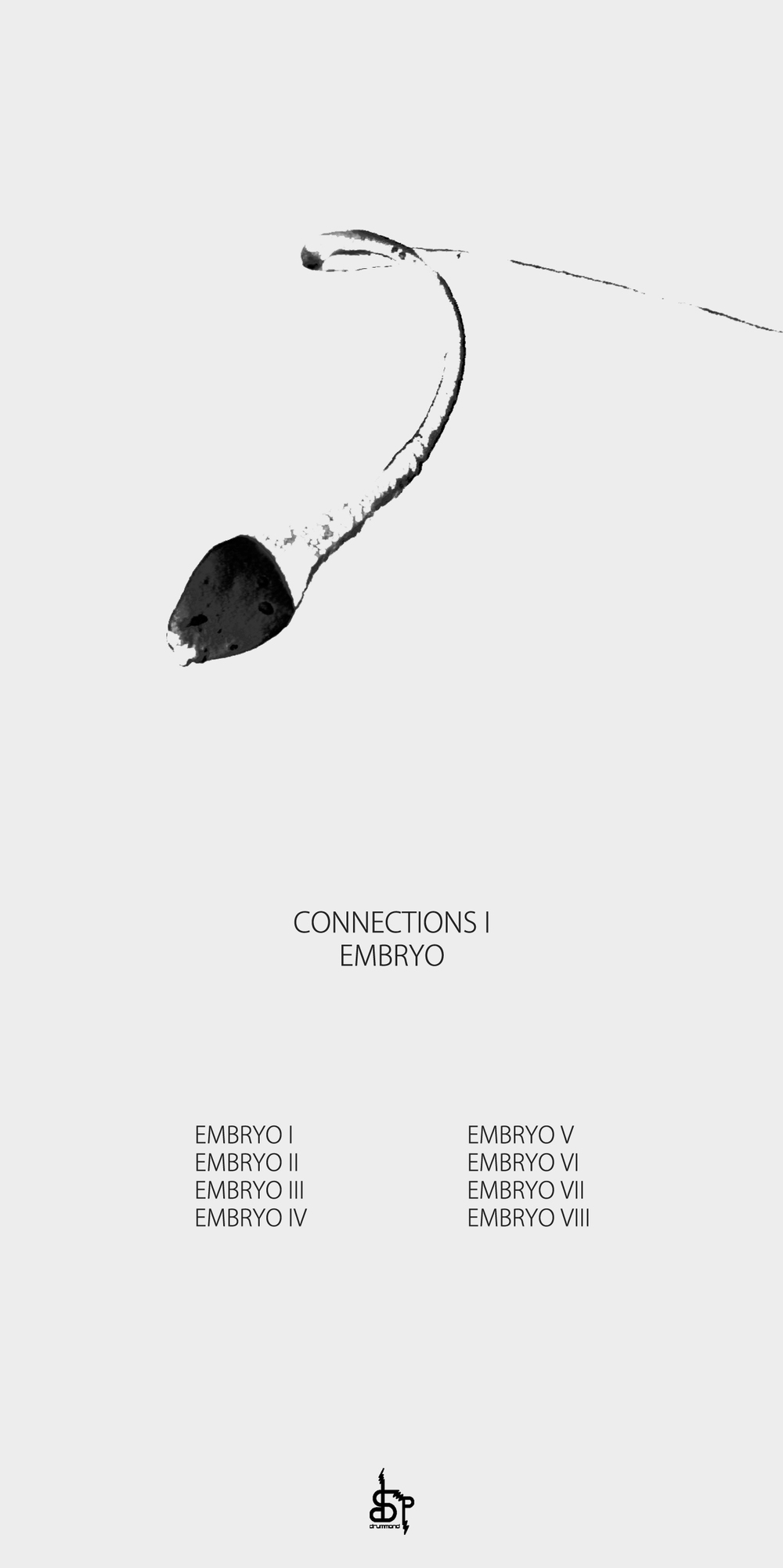 DSP013 - Biagio Laponte - Connections I - Embryo