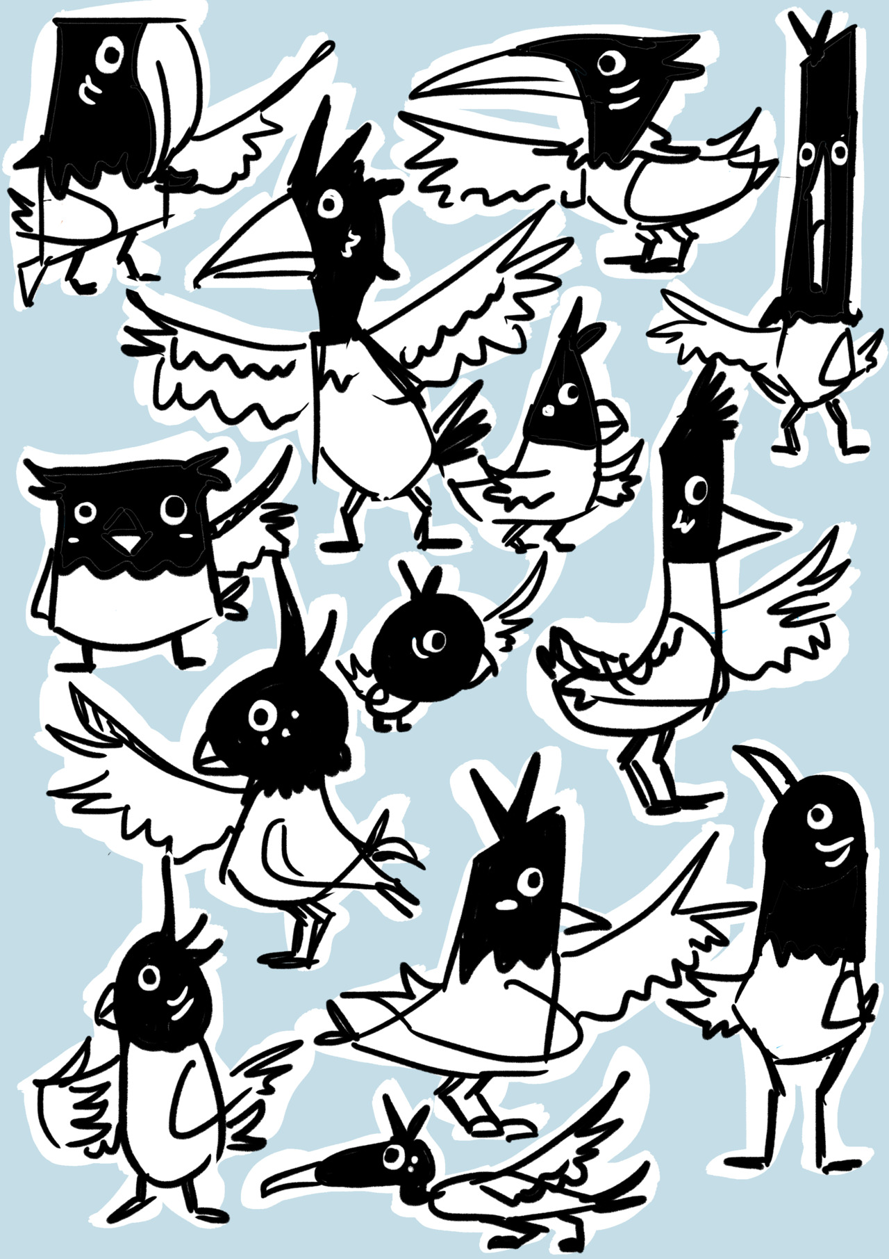 birds for my final year project