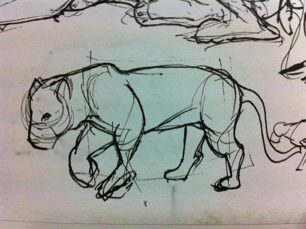 Zoo day! Big kitties are so fun to draw!