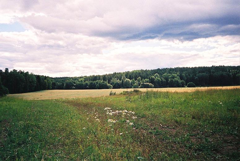 inthemakingbybelen_autumn_22.jpg