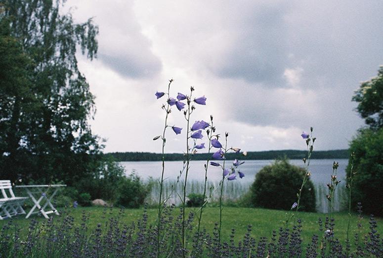 summer-029.jpg