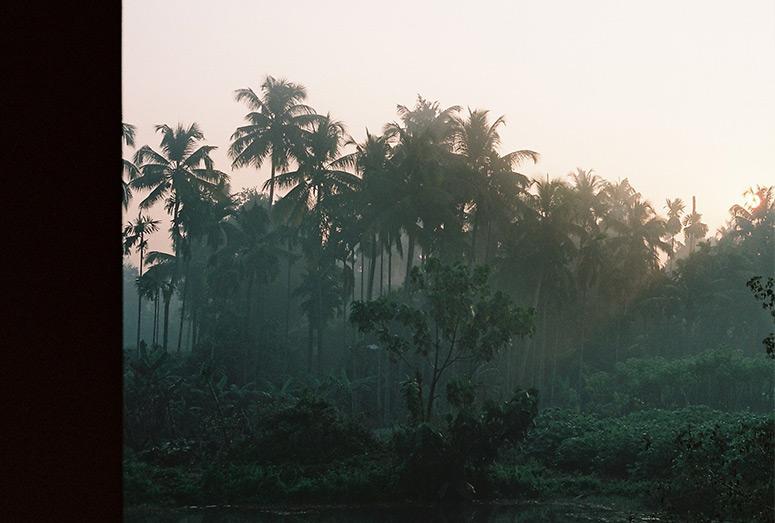 Sabana. India