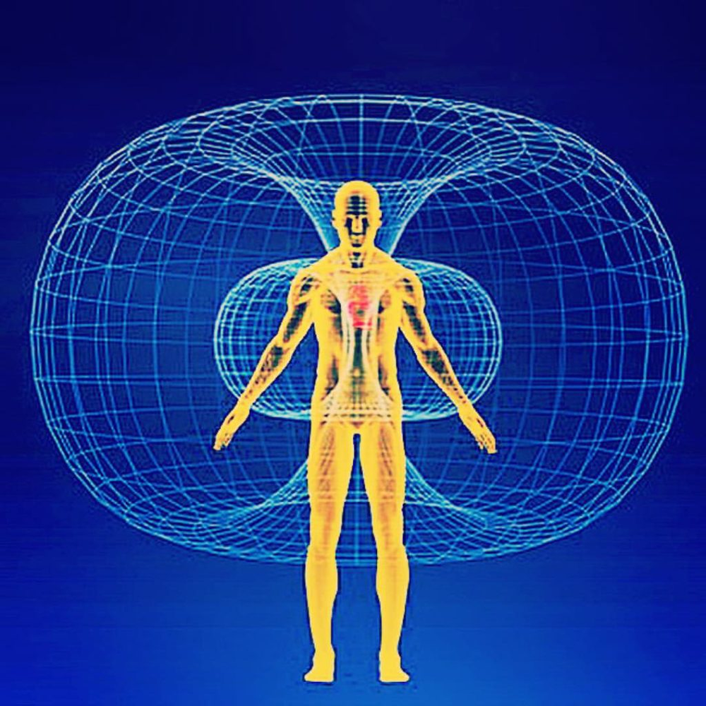Figure 4:  Energy moving through a front facing male human form within toroidal geometric space.