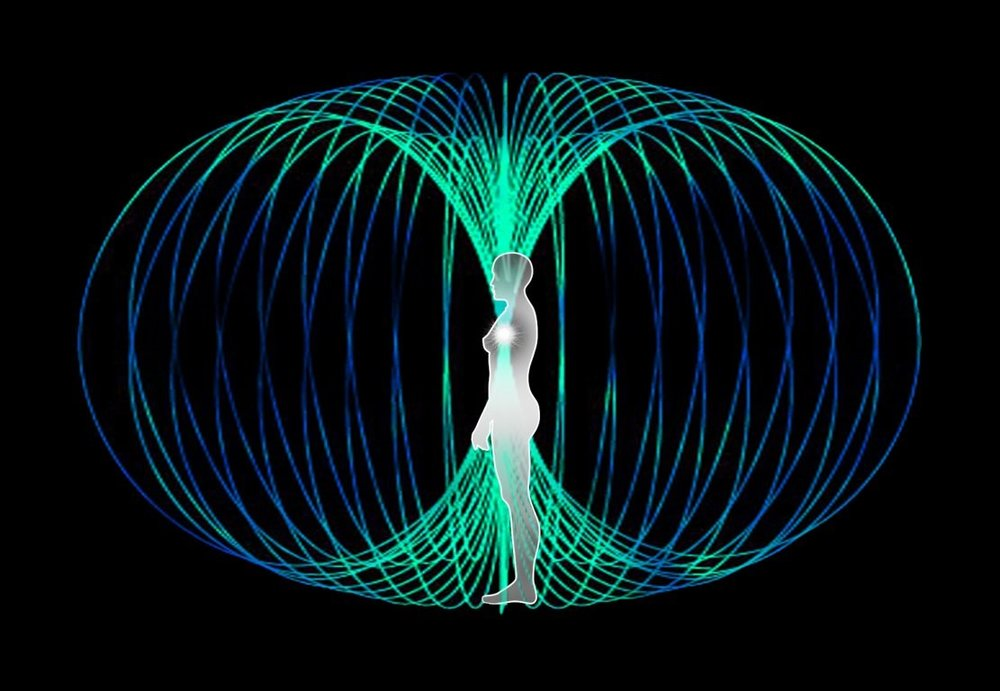 Figure 5:  Energy moving through a side facing female human form within toroidal geometric space.  The toroidal field has perfect symmetry irrespective of perspective.