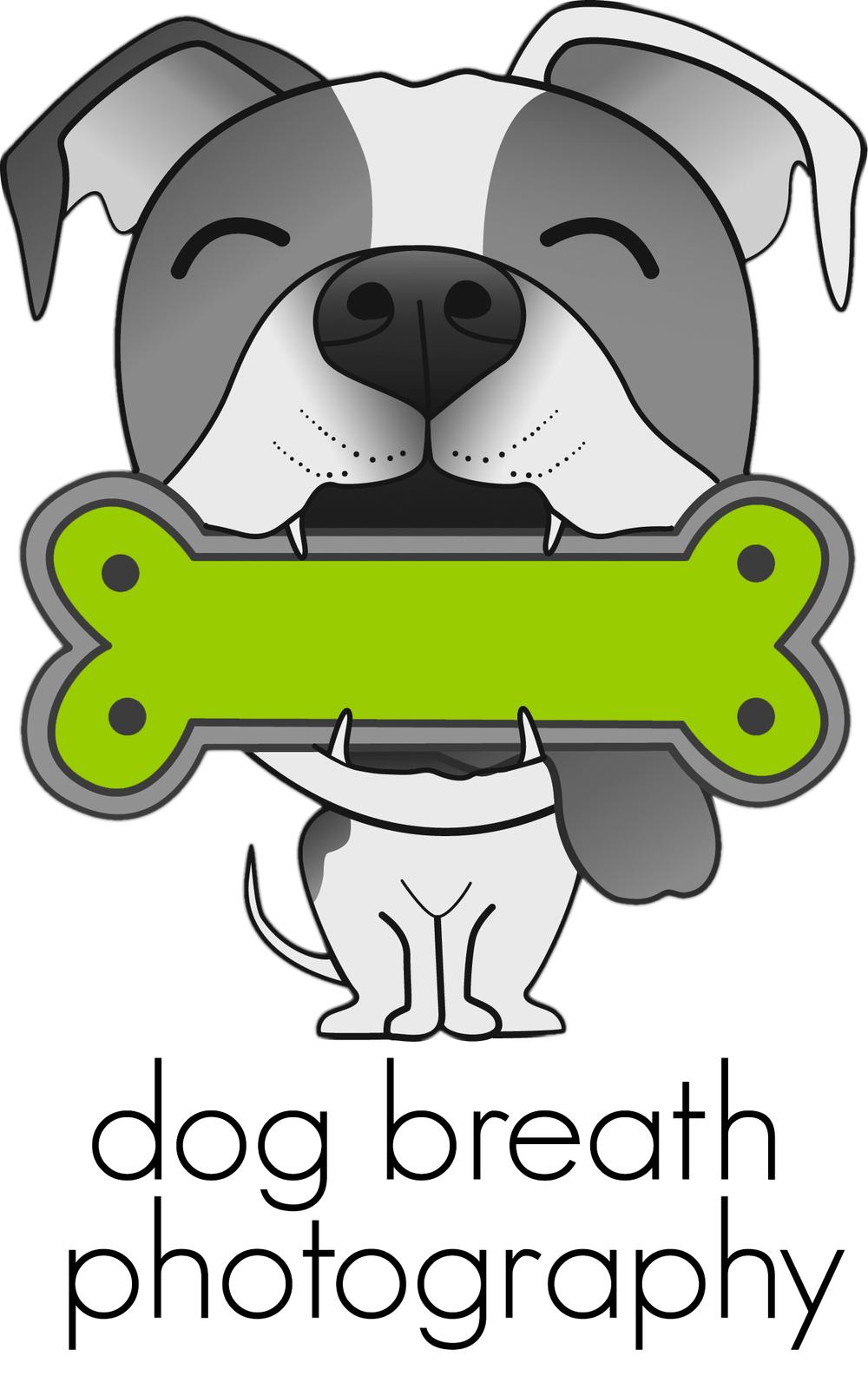 Boston Dog Photographer | Dog Breath Photography | Boston Pet Photographer