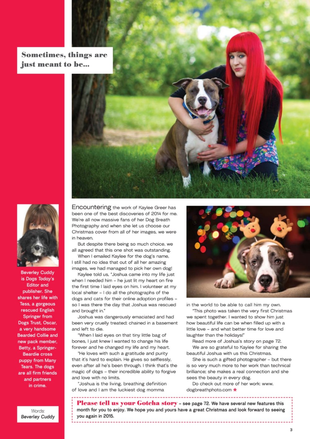 Writeup from the Editor of Dogs Today Magazine - January 2015 issue