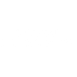 Optimal Sales Search