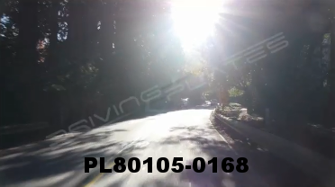 Vimeo clip HD & 4k Driving Plates Redwood Forest, CA PL80105-0168