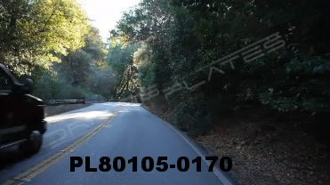 Vimeo clip HD & 4k Driving Plates Redwood Forest, CA PL80105-0170