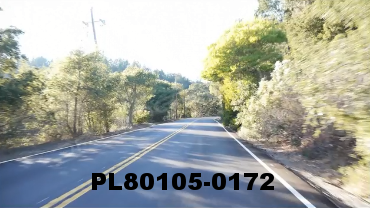 Vimeo clip HD & 4k Driving Plates Redwood Forest, CA PL80105-0172