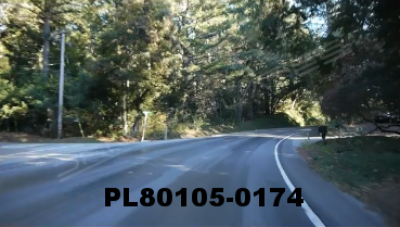 Vimeo clip HD & 4k Driving Plates Redwood Forest, CA PL80105-0174
